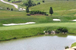 8/4: Golf Classic at Auburn Hills
