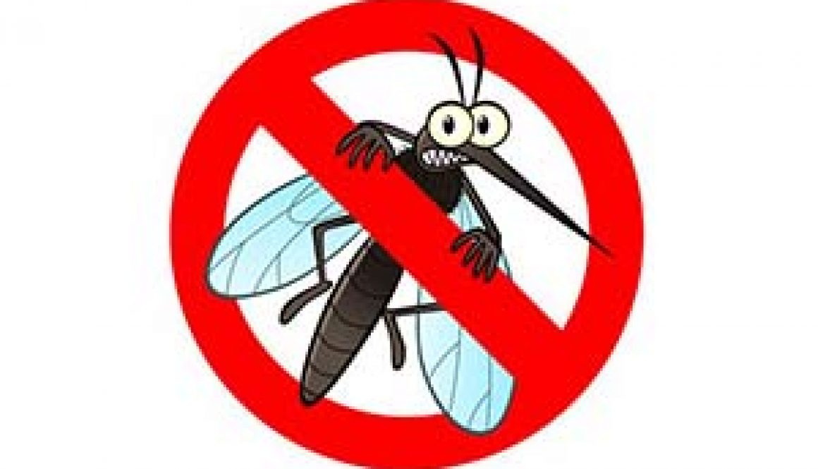 NRV health leaders educate about mosquito dangers