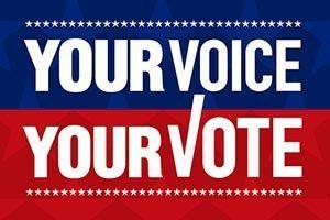 vote-you-voice