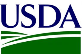 Streamlined version of USDA guaranteed loans available