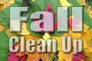 fall-cleanup1