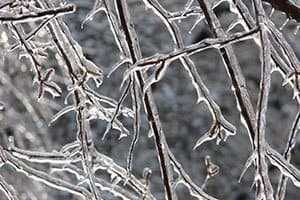 Pockets of freezing rain possible through late morning 2