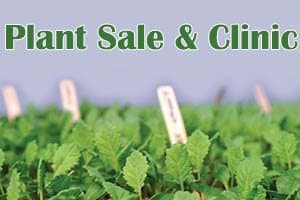 5/13: Plant Sale and Plant Clinic