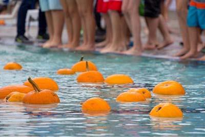 10/14: Floating Pumpkin Patch