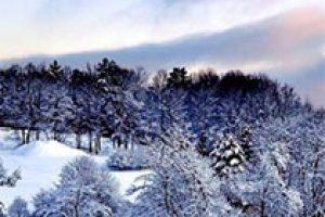amem_winter