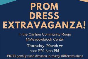prom-dress-extravaganza