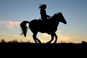amem_horseback