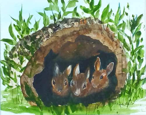 Rabbits by Peggy Amonette