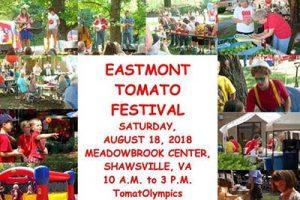 tomato-festival
