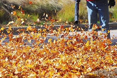 outdoor manual worker clean the fallen leaves on the road by blo