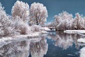 amem_frozen_beauty