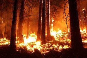 burning-restrictions