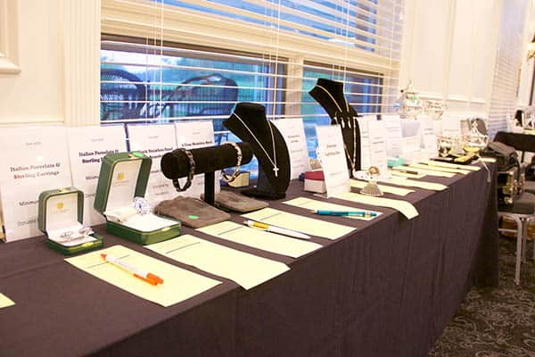 2017 IDA Silent Auction