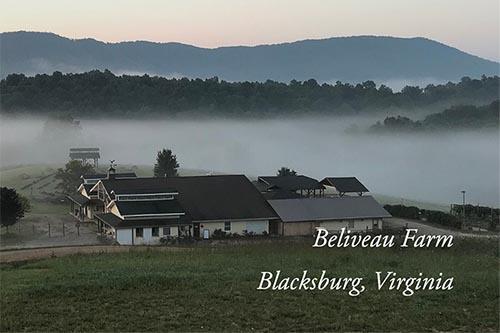 Late Greats Winter Wine Sale at Beliveau Farm!