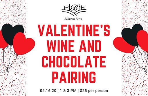 2/16: Valentine's Wine and Chocolate