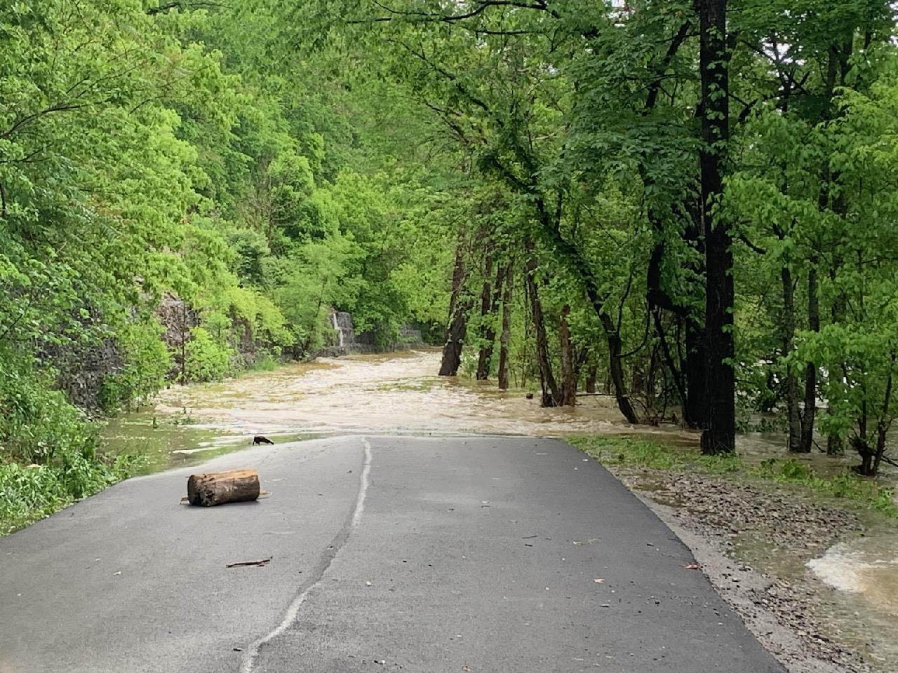 Big Falls Road, McCoy - Photo by Susan P.