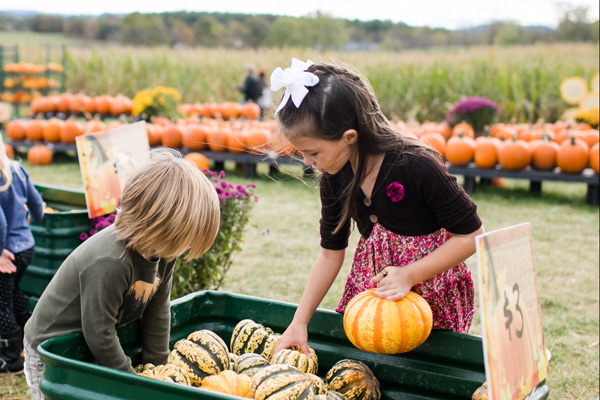 Sinkland Farms Pumpkin Festival