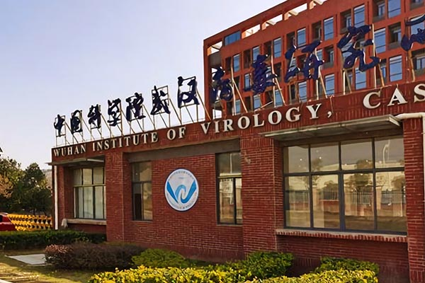Google, EcoHealth Alliance, and the Wuhan Institute of Virology 2
