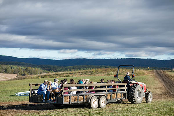 Sinkland Farms' Pumpkin Festival Celebrates 30 Years 10