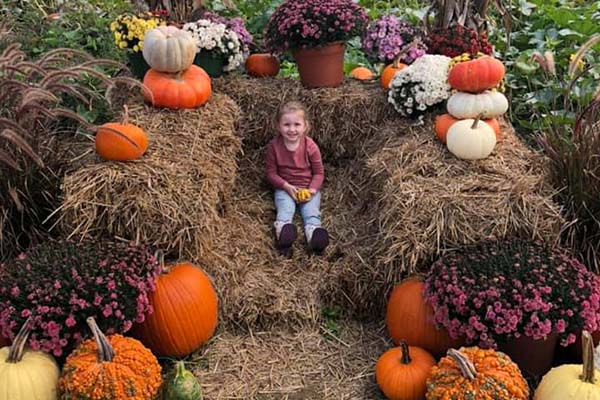 TruHarvest Pumpkin Patch